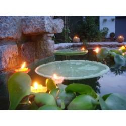 Schwimmende Kerzen